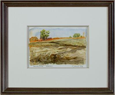 Craig Lueck, 'Lenexa Field, Kansas', 2003