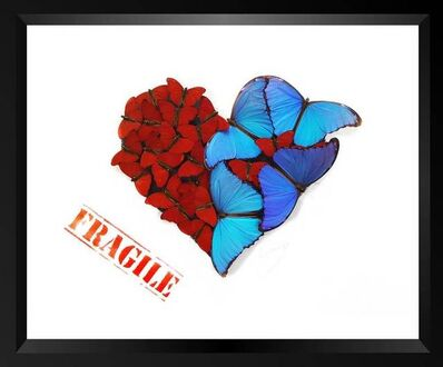 SN, 'Fragile Heart ', 2018
