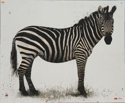 David Morago, 'Zebra', 2019