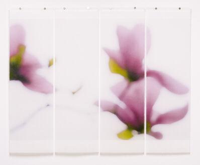 Jeri Eisenberg, 'Magnolia No. 9 quad', 2010