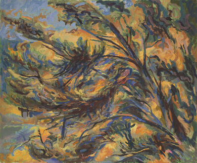 David Rolt, 'Windblown tree, South of France', ca. 1960