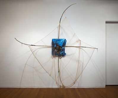 Brook Andrew, 'Catching Systems', 2013