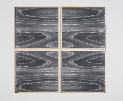 Lisa Oppenheim, 'Landscape Portraits (Poplar) (Version III)', 2015