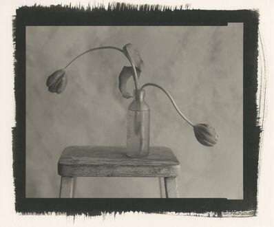 Kenro Izu, 'Still Life 1247', 2012