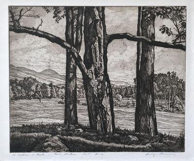 Luigi Lucioni, 'Dominating Trees', 1964