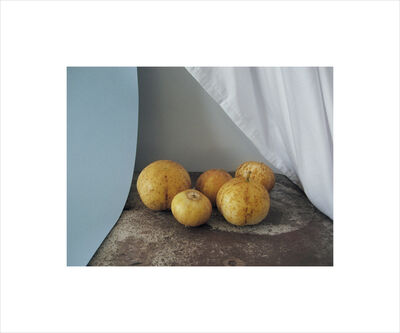 Georgie Hopton, 'Still Life With Lemon Cucumber', 2007