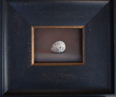 Kate Breakey, 'Quail Egg 50', 2019