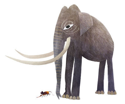 Brendan Wenzel, 'Elephant and Elephant Shew'