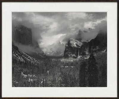 Ansel Adams, 'Alders, Prairie', Unknown
