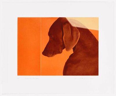 William Wegman, 'William of Orange', 2009