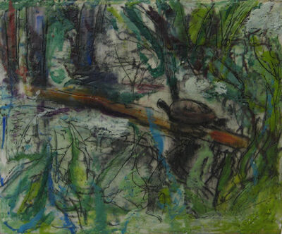 Marcie Wolf-Hubbard, 'Turtle'