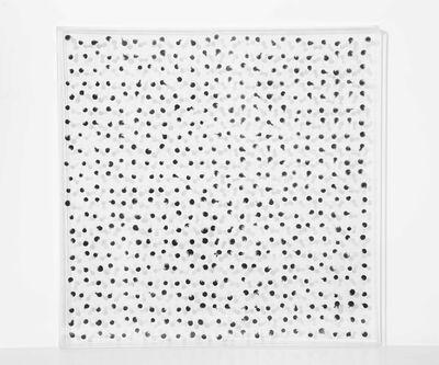 Yang Xin 杨鑫, 'Invisible Symbiosis 2', 2016