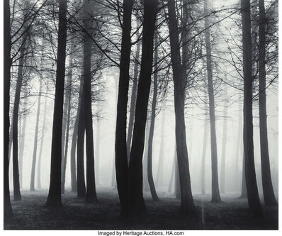 Don Worth, 'Trees and Fog, San Francisco (two photographs)', 1962; 1971