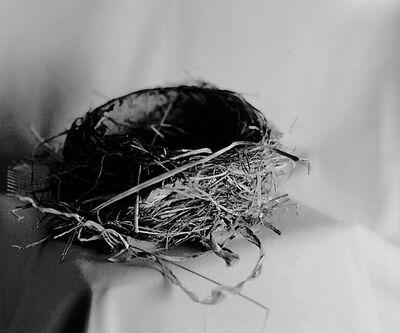 Denise Oehl, 'Nest', 2018