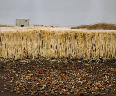 Shirley Wegner, 'Field', 2012