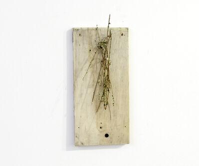 Ícaro Lira, 'Untitled', 2014