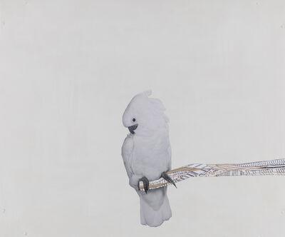 Frances Stark, 'Portrait of the Artist as Full-on Bird', 2004