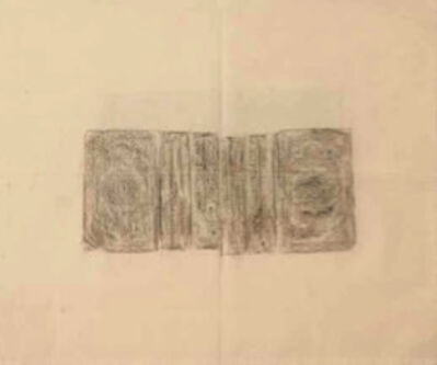 Ximena Labra, 'Pliny's Natrual History (4 Vol.)', 2014-2017