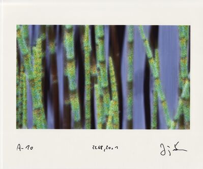Jörg Sasse, 'Arbeiten am Bild', 2001
