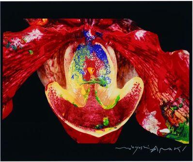 Nobuyoshi Araki, 'Painting Flower', 2004