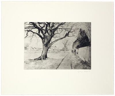George Shaw, '12 Short Walks VI', 2005
