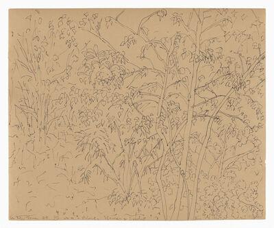 Hannah Wilke, 'Flowers', c.1985