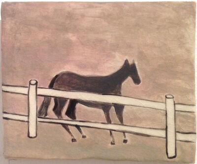 Noel McKenna, 'Horse behind fence', 2014