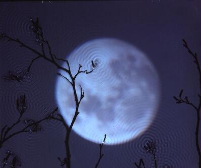 Susan Derges, 'Full Moon – Alder', 2003
