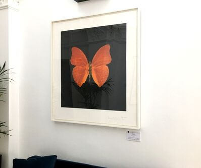 Damien Hirst, 'Memento (03 - Large Orange Butterfly)', 2007