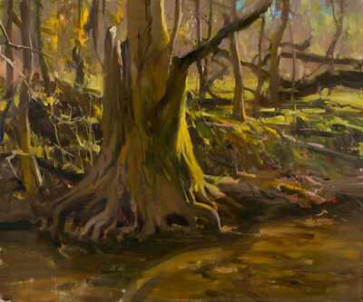 Quang Ho, 'Exposed Root - Pennsylvania', 2020