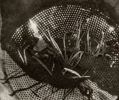 Edmund Teske, 'Disintegrating Colander, Chicago and Disintergrating Fry Pan, Chiacgo (2 works)', circa 1938-1939
