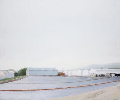 Ana Garcia Perez, 'Invernadero 3', 2013