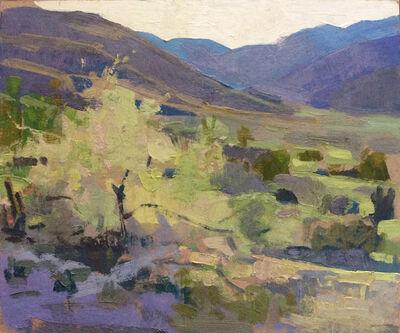 Joe Forkan, 'Backlighting, Anza-Borrego', 2015