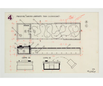 "Luis F. Benedit, 'Prototipo ""Hábitat-Laberinto para cucarachas""', 1972"