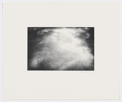Alison Wilding, 'Starling 1', 2005