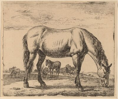Adriaen van de Velde, 'Grazing Horse', ca. 1657/1659