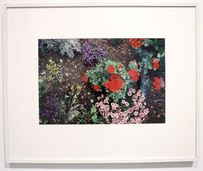 "Felix Gonzalez-Torres, '""Untitled"" (Alice B. Toklas and Gertrude Stein's Grave, Paris)', 1992"