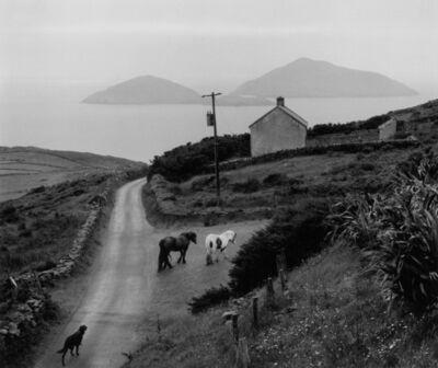 Pentti Sammallahti, 'County Kerry, Ireland', 1978
