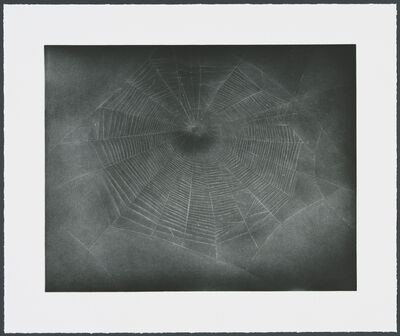 Vija Celmins, 'Untitled (Web 3)', 2002
