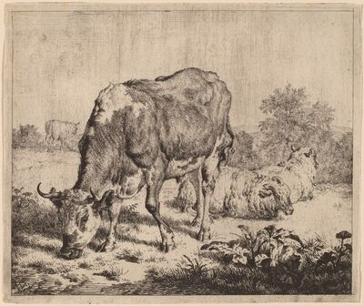 Adriaen van de Velde, 'Spotted Bull and Three Sheep', 1670