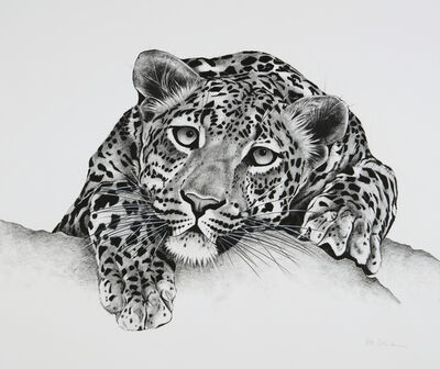 Rose Corcoran, '18. Leopard on Rock', 2018