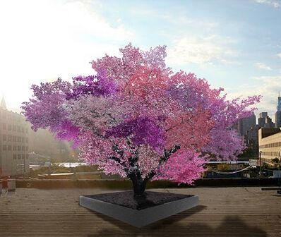 Sam Van Aken, 'Tree of 40 Fruit', 2008-2014