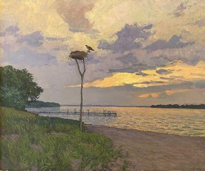 Viktor Butko, 'Ospreys Sunset', 2020