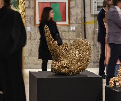Stefano Bombardieri, 'Rhino Crack', 2019