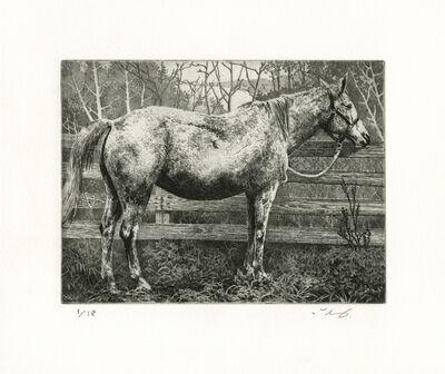Ikeda Manabu, 'White Horse', 2018