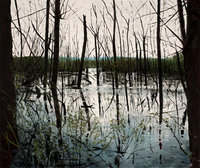 Michael Brophy, 'Shallow Lake II', 2019