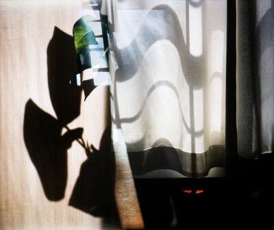 Augusta Wood, 'Curtain Shadows', 2019