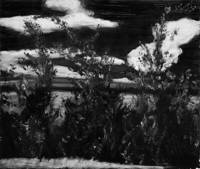 Joe Andoe, 'Roadside Nov 5', 2017