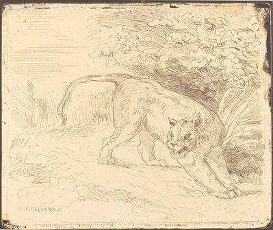 Eugène Delacroix, 'Tigre en arrêt', 1854