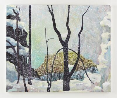 Alexandra Wiesenfeld, 'Snow', 2014